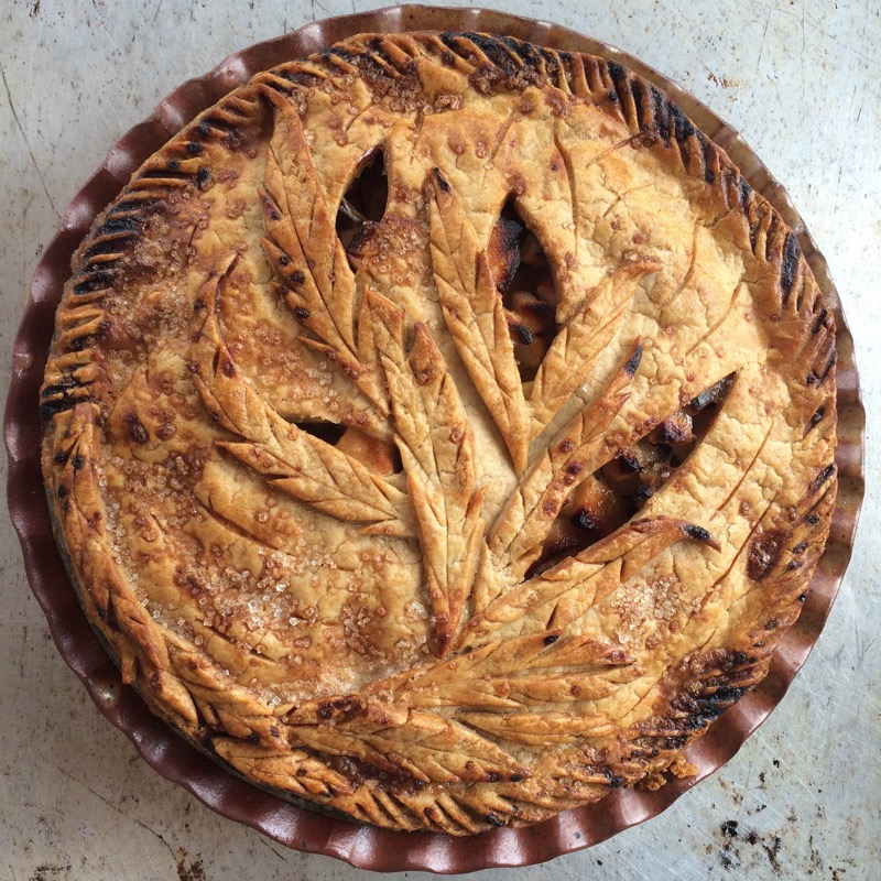 Long Leaves apple pie 800